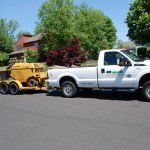 Tree Service Bucks County
