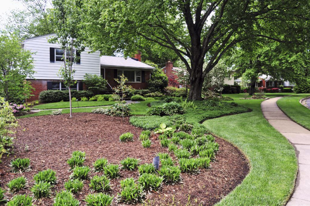 plant health care - tree mulch & landscaping PA