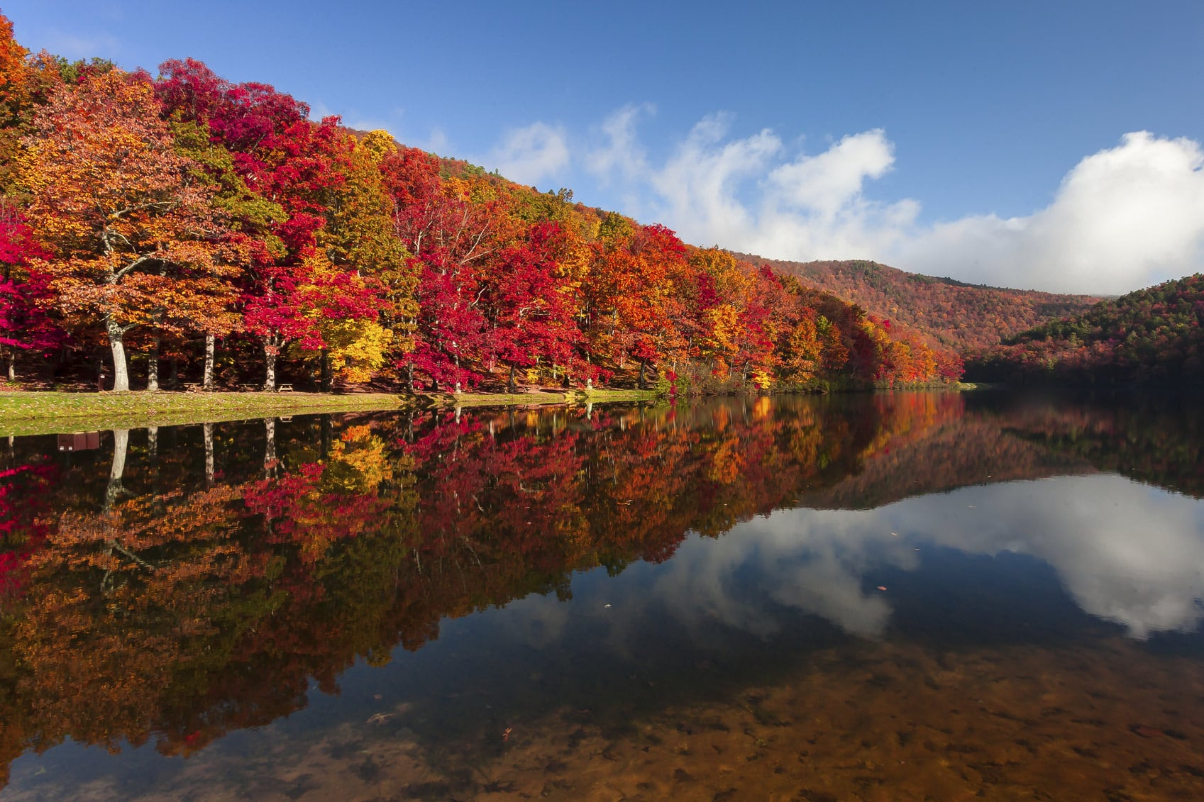 fall foliage: fall tree care in PA